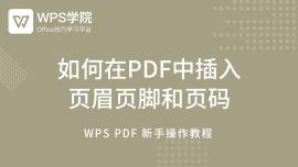 (9)如何在PDF中插入 页眉页脚和页码