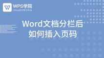Word文档分栏后 如何插入页码|WPS学院